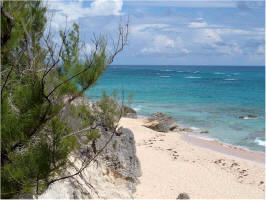 A Photograph of a Bermuda Beach.